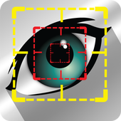 Eye Localization