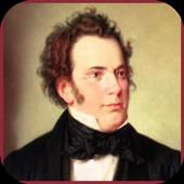 Franz Schubert Classic