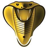 Cobra Plus IPTV