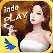 IndoPlay AllinOne