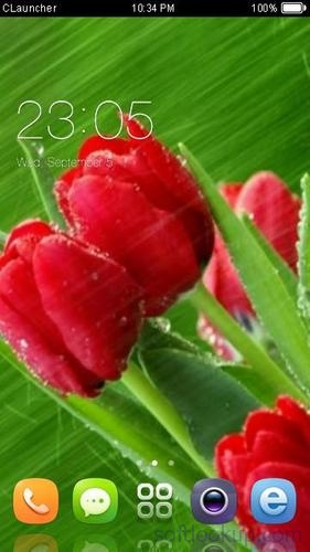Best Rose Theme HD
