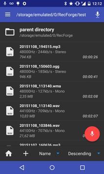 RecForge II - Audio Recorder ScreenShot3