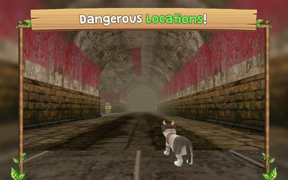 Cat Sim Online: Play with Cats ScreenShot3